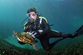 david l family scuba diving adventures winter garden fl meetup