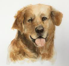 watercolor lesson how to paint a dog