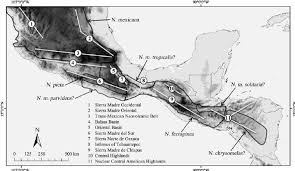 regions of mexico map map depicting major physiographic regions in southern mexico and