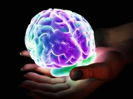 light up your brain pleasure center of the brain light it up pleasure center of the
