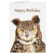 owl birthday cards the cool card shop