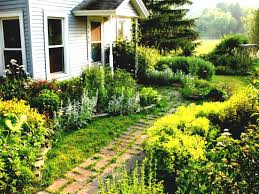 Very Small Backyard Landscaping Ideas by Ideas Very Small Backyard No Maintenance Landscaping House