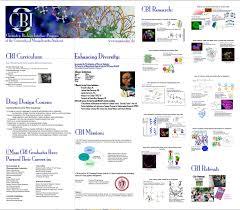 chemistry biology interface training program university of