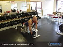 Dumbbell Exercises On Bench Dumbbell Reverse Fly On Incline Bench Video Exercise Guide U0026 Tips