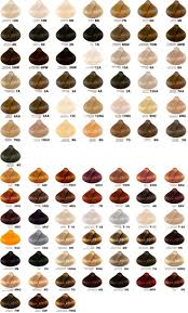 Types Of Hair Colour by Hair Color Numbers Chart Images Hair Coloring Ideas