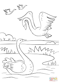 autumn scene with swans coloring page free printable coloring pages