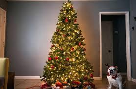 brown christmas tree sale artificial christmas tree artificial christmas tree storage