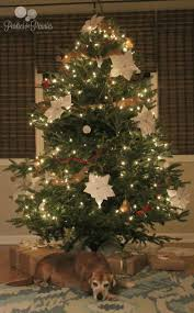 christmas decorating ideas parties for pennies
