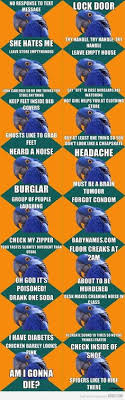 Paranoid Parrot Memes - lol paranoid parrot memes are the greatest my life pinterest