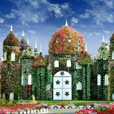 garden and flower show miracle garden dubai jardin rosa u0027s flores etc pinterest