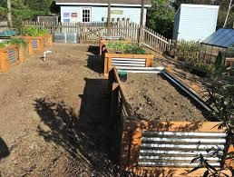 best 25 vegetable planters ideas on pinterest box garden
