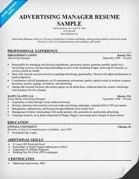 Digital Resume Example by Internet Marketer Free Resume Samples Blue Sky Resumes Digital