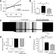 leptin acts via lateral hypothalamic area neurotensin neurons to