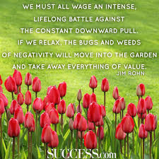 quote garden success 17 remarkable quotes by jim rohn success