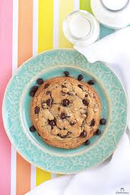 xl serious craving chocolate chip cookie cleobuttera
