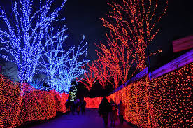 Portland Christmas Lights 6 Must See Christmas Light Displays In Portland Discover
