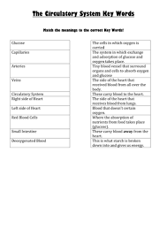 worksheets for ks3 respiration by jmistr10 teaching resources tes