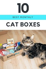 Home Decor Subscription Box by 10 Best Monthly Cat Subscription Boxes Urban Tastebud