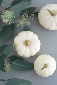 Wohnzimmerm El In Ahorn Herbstdeko Ganz Schlicht Mit Hagebutten Eukalyptus Und Weißen