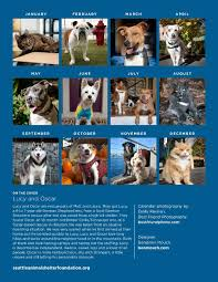 the scoop u2013 seattle animal shelter news and events