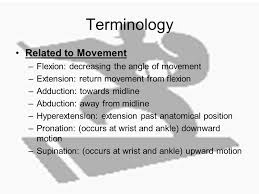 Human Anatomy And Physiology Terminology Basics Of Human Anatomy And Physiology Unit 3 Anatomical
