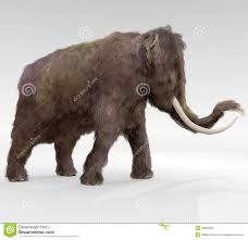 woolly mammoth stock illustration image 48960532