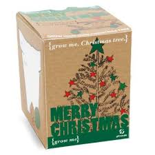 buy grow me christmas tree from our other occasions range tesco