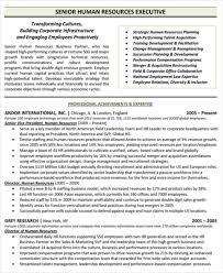 executive resume pdf free executive resume templates 34 word pdf documents shalomhouse us