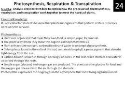 6 l 5b 2 photosynthesis respiration u0026 transpiration south