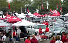 Ohio State Car Flags You And 20 Million Of Your Best Friends