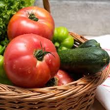 Rugged Boy Tomato U0027rugged Boy U0027 Lycopersicon Esculentum My Garden Life