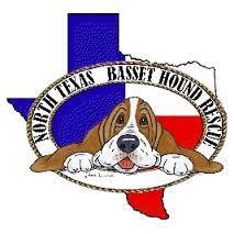 afghan hound rescue north carolina hale pet door basset hound rescue organizations