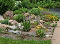 Rocks For Rock Garden Design Ideas Rock Garden Best 25 On Pinterest Rocks