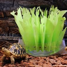 pet reptile tortoise lizard terrarium box humidifier without
