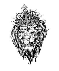 lion face stock photos u0026 pictures royalty free lion face images