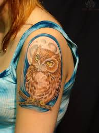 40 best tree branch for owl tattoos images on owl