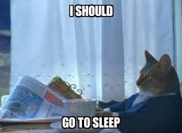 Sleep Meme - i should cat i should quit my job meme explorer