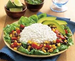 Cottage Cheese Dishes by Salads With Cottage Cheese Daisy Brand