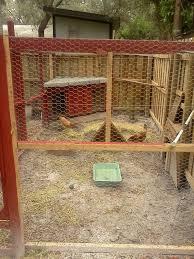 backyard chicken coops customer portal home outdoor decoration