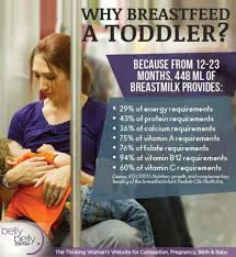 Breastfeeding Meme - you know you re breastfeeding a toddler when herfamily ie