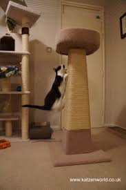 236 best cats u003e scratcher images on pinterest cat scratching