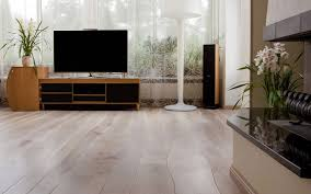 Flooring Options For Living Room Miraculous Living Room Flooring Options Designs Of For Cozynest Home