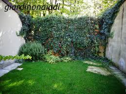 giardini rocciosi in ombra come progettare un giardino il giardino delle naiadi c ombra e