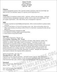 gallery of resume format resume samples vp marketing marketing