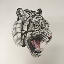 wrapped tiger pencil pen colour pencil 20x20 in tigers wraps