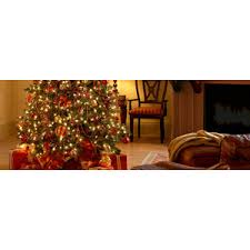 Snoopy Christmas Decorations Lowes by Trim A Tree At Lowe U0027s Christmas Trees Led Lights Polyvore
