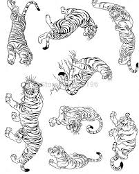 40 best adam levine tiger tattoo drawing images on pinterest