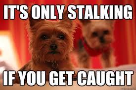 Stalking Meme - it s only stalking if you get caught stalker quickmeme