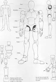start with a humanshaped figure onhe parts of the body wh draw