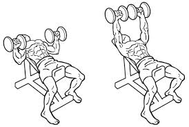 Incline Bench Muscle Group Get Fit How To Build The Perfect Pecs Gq South Africa
